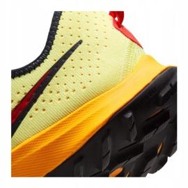 Buty Nike Air Zoom Terra Kiger 7 M CW6062-300 wielokolorowe 6