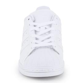 Buty adidas Superstar W FV3285 białe 1