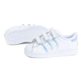 Buty adidas Superstar Cf I Jr FV3657 białe 1
