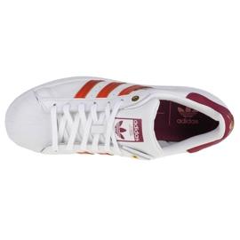 Buty adidas Superstar W FW2527 białe 2