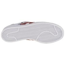 Buty adidas Superstar W FW2527 białe 3